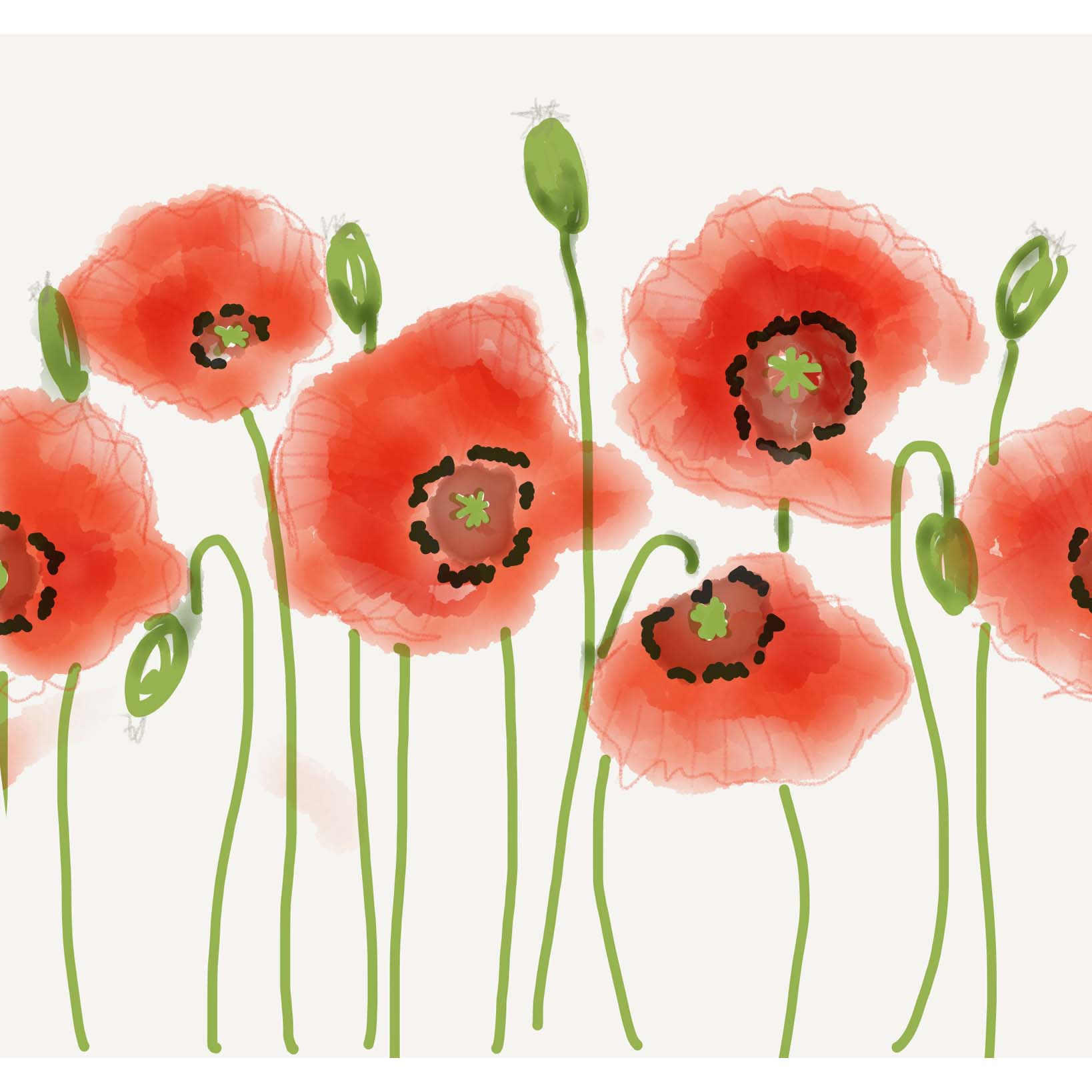 poppies-drawing-07-11-2016